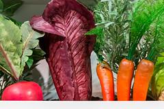 Unechtes Gemüse wie Karotten, Tomaten und Salat, als Küchendekoration