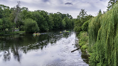 L'Orne à Pont d'Ouilly 1