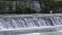 Barrage sur l'Orne 2