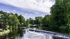 L'Orne à Pont d'Ouilly 2