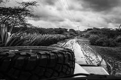 2019 Arusha
