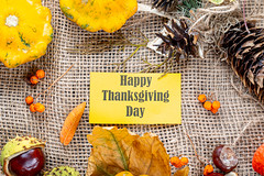 Happy Thanksgiving tag with cones, berries and dry leaves