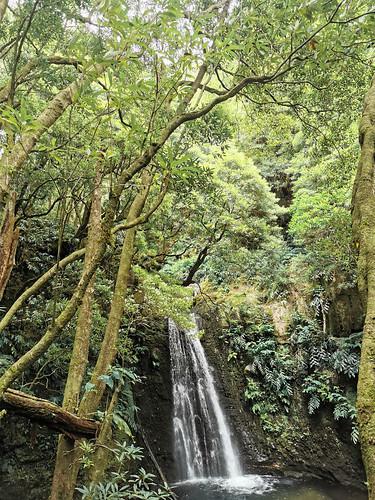 senderismo Salto do Prego y arroyo Faial do Terra Isla San Miguel Azores Portugal 07