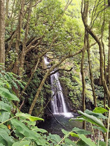 senderismo Salto do Prego y arroyo Faial do Terra Isla San Miguel Azores Portugal 06
