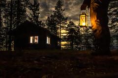 Forest cabin night scene