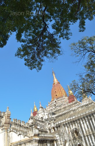 White temple with golden peak seen with tree canopy in Bagan, Myanmar