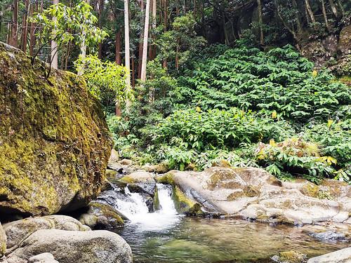 senderismo Salto do Prego y arroyo Faial do Terra Isla San Miguel Azores Portugal 08
