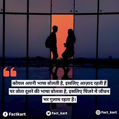 Image by factkart (182502676@N04) and image name #hindiquotes आप क्या कहते हैं? कमेंट करें। photo  about View on Instagram ift.tt/2O1IFHO