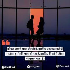 Image by factkart (182502676@N04) and image name #hindiquotes आप क्या कहते हैं? कमेंट करें। photo  about via Instagram ift.tt/2O1IFHO