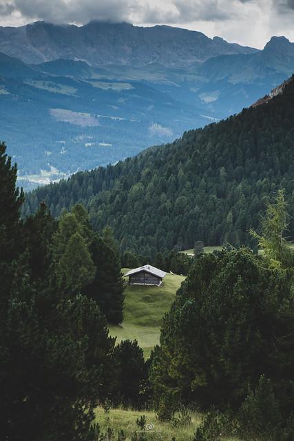 cabin in the wood / Seceda / Dolomiti