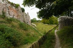 2665 Château d'Arques-la-Bataille