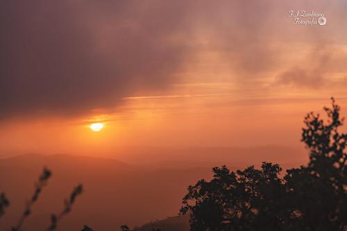 Dawn among Mists ..