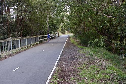 Ferneligh Track Tunnel - The grade down to Adamstown,
