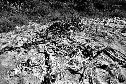 rope - Racecourse Beach NSW