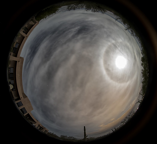 Harvest Moon Lunar halo in Tucson AZ