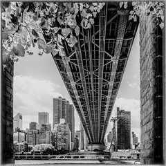 pont RI nb