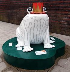 9.9.19 Stockport Station Frogs 4.jpg