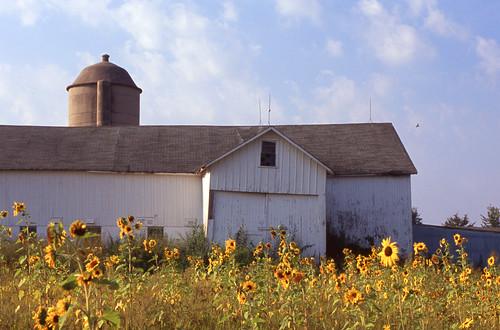 September Dairy Barn