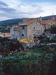 Yugoslavia 1986