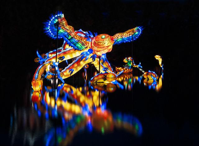 Jardin de lumière