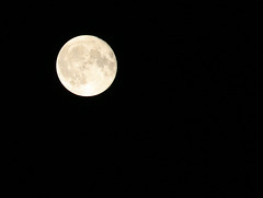 Image by jackbaratta (jackbaratta) and image name Harvest Moon 2019 photo  about Tinkering with aperture, ISO & f-stop.  High thin clouds. 1 day after complete full phase due to heavy clouds on Friday.