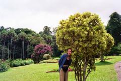 Ogórd botaniczny w Kandy