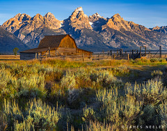 Image by James Neeley (jpn) and image name Old Friends photo  about It has been a while since I have visited Mormon Row in Grand Teton National Park. Always an amazing view when the light comes!