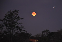 Image by harry de haan, the cameraman (harrydehaan) and image name last night's moon ------------------ DSC_2862_e_ photo