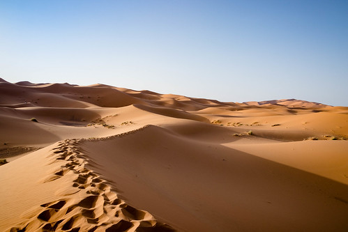 Sand dunes - Merzouga, Marroco