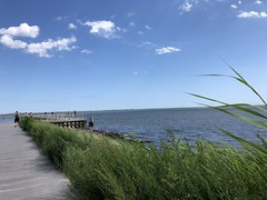 Great South Bay, Summer