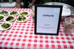 Plummertime Good Vibes Cookout II