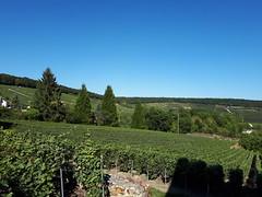 20190914_154753 - Photo of Châtillon-sur-Marne