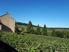 20190914_154807 - Photo of Châtillon-sur-Marne