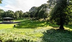 THIS IS KNOWN AS THE HOLLOW [PHOENIX PARK DUBLIN]-155836