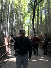 In the Arashiyama bamboo forest- this is the main attraction here