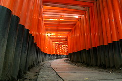 An unexpected lull in the crowds at Fushimi- Inari