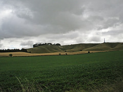 Cherhill Down and White Horse