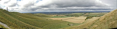 Cherhill Down Panorama
