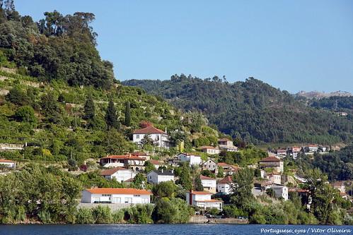 Ribadouro - Portugal 🇵🇹
