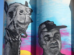 Cowell. Eyre Peninsula. Silo art work still being finished. A local cameleer and one of his beloved camels.