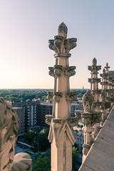 Washington Cathedral Tower Pinnacles