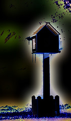Little House in the Dark