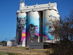 Cowell.  Franklin Harbour  Eyre Peninsula. The latest  South Australian silo art.  Being completed in September 2019. The artist is Austin Moncrieff and the local cameleer depicted is Lionel Deer with his camel Diamantina.