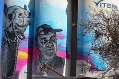 Cowell on Eyre Peninsula. Silo art in action as the artist completes his art work on the Viterra silos at Cowell in September 2019. The artist is Austin Moncrieff. The local cameleer is   Lionel Deer with his camel Diamantina.