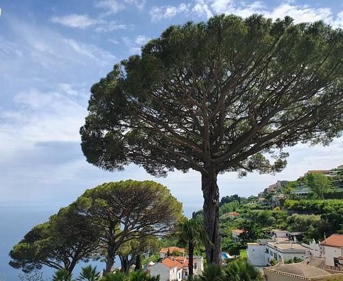 Ravello, along the Amalfi Coast (2)