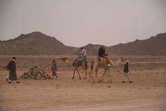 Nomads-oasis desert, Hurghada, Egypt