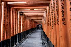 Kyoto January 19