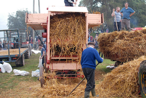 Moynalty Steam Threshing Festival 2019.