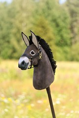 Hobbyhorse Donkey by Eponi (attribution required)