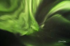La Dama Verde baila en el cielo Ártico Aurora Boreal Montañas de Senja